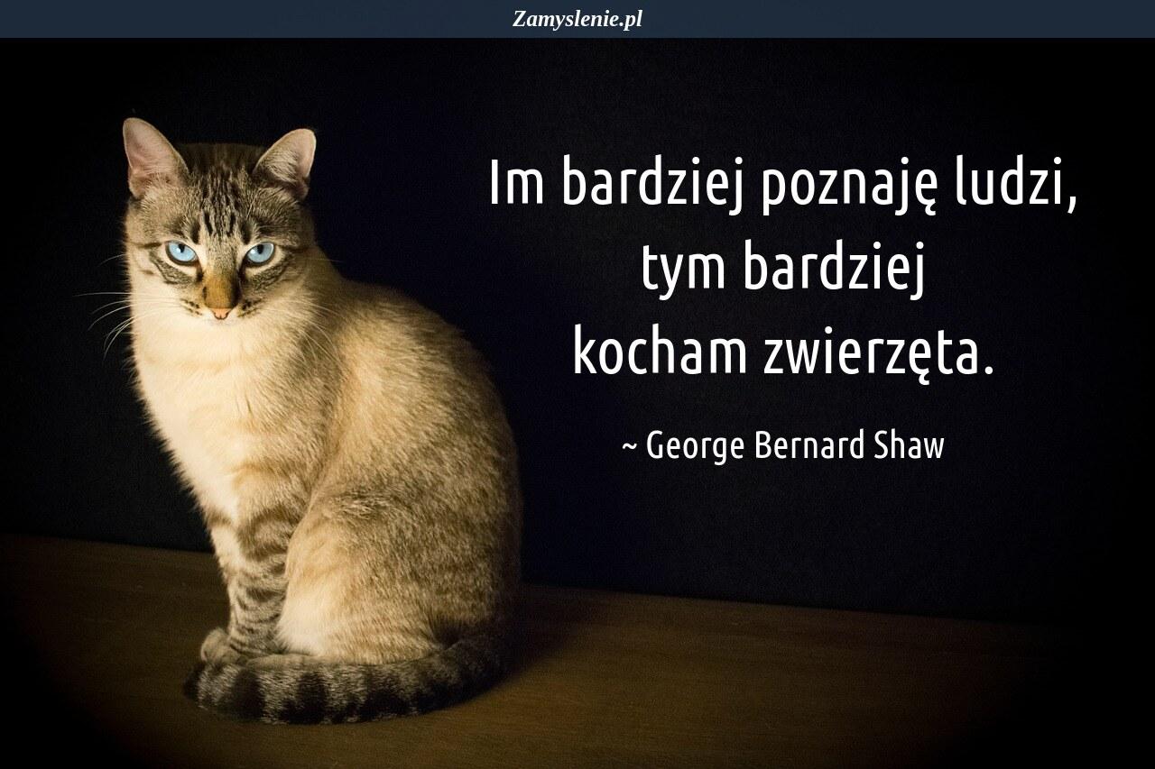 Obraz / mem do cytatu: Im bardziej poznaję ludzi, tym bardziej kocham zwierzęta.