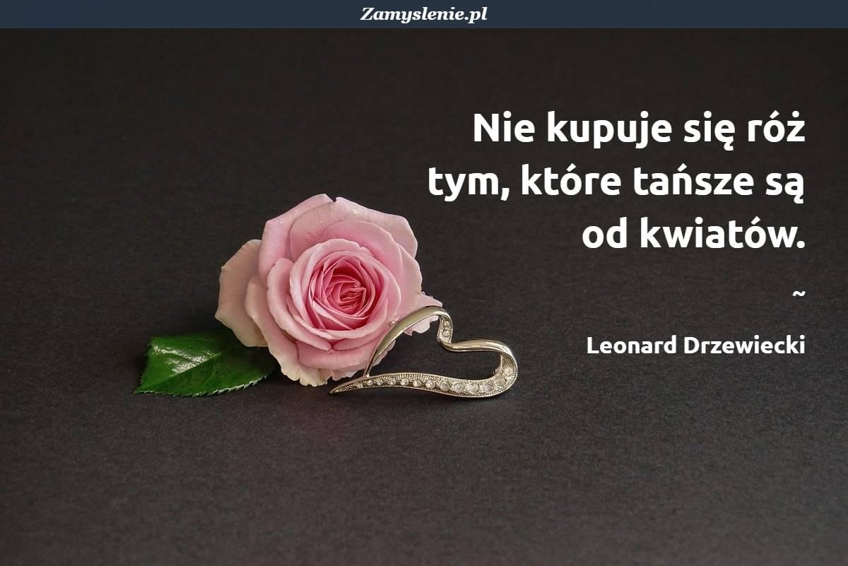 Obraz / mem do cytatu: Nie kupuje się róż tym, które tańsze są od kwiatów.