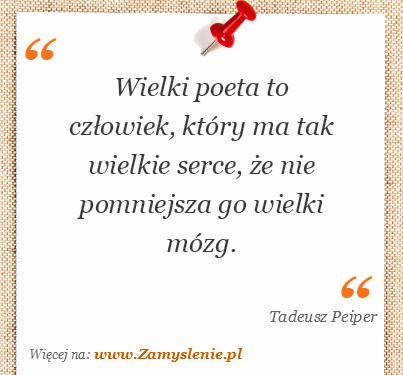 Obraz / mem do cytatu: Wielki poeta to człowiek, który ma tak wielkie serce, że nie pomniejsza go wielki mózg.