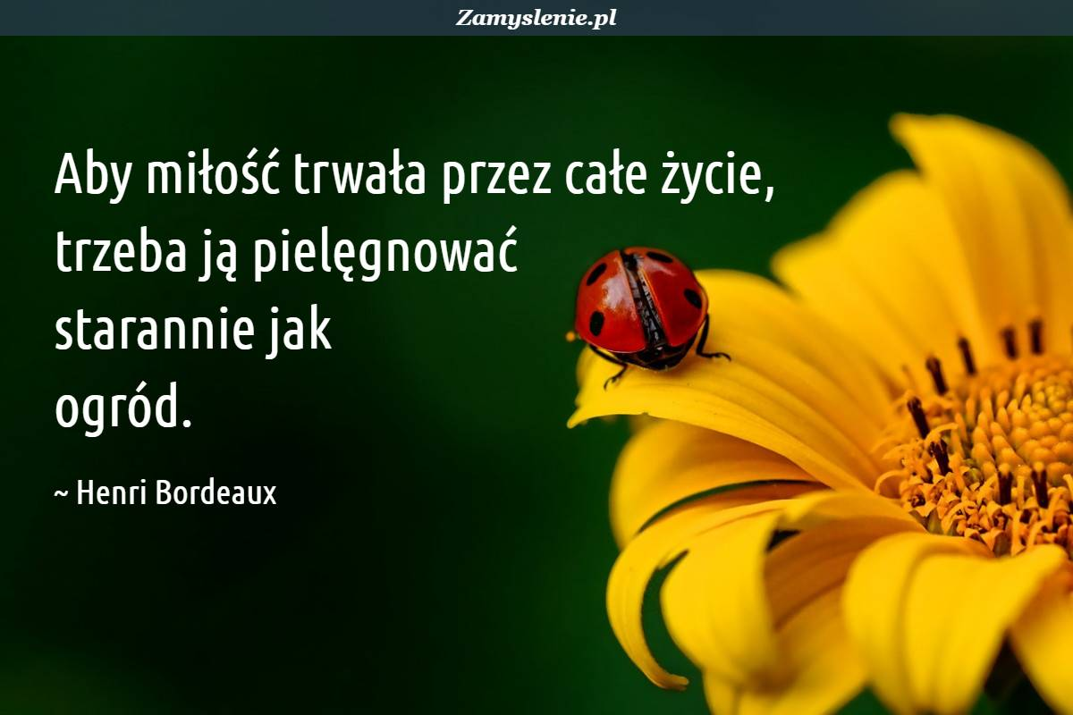 Obraz / mem do cytatu: Aby miłość trwała przez całe życie, trzeba ją pielęgnować starannie jak ogród.