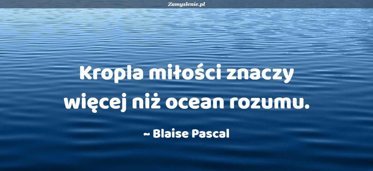 Obraz / mem do cytatu: Kropla miłości znaczy więcej niż ocean rozumu.