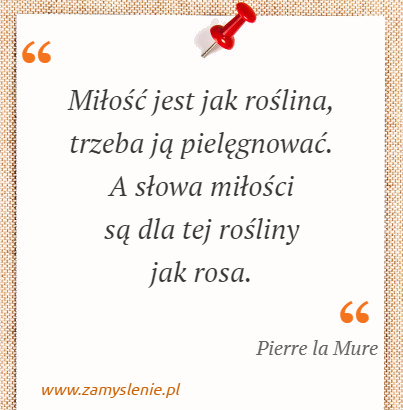 Obraz / mem do cytatu: Miłość jest jak roślina, trzeba ją pielęgnować. A słowa miłości są dla tej rośliny jak rosa.