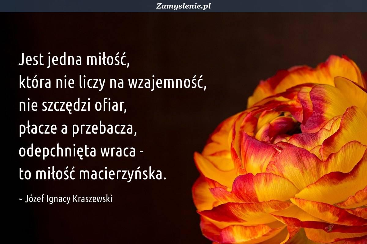 Obraz / mem do cytatu: Jest jedna miłość, która nie liczy na wzajemność, nie szczędzi ofiar, płacze a przebacza, odepchnięta wraca - to miłość macierzyńska.