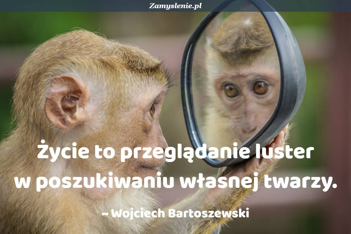 Obraz / mem do cytatu: Życie to przeglądanie luster w poszukiwaniu własnej twarzy.