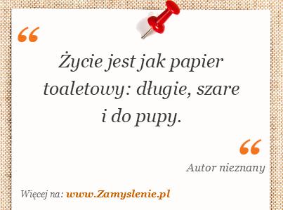 Obraz / mem do cytatu: Życie jest jak papier toaletowy: długie, szare i do pupy.