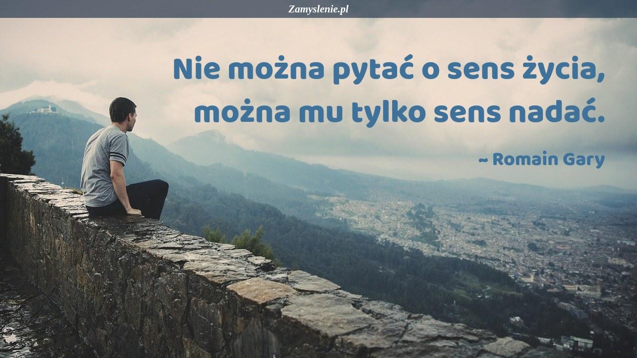 Obraz / mem do cytatu: Nie można pytać o sens życia, można mu tylko sens nadać.