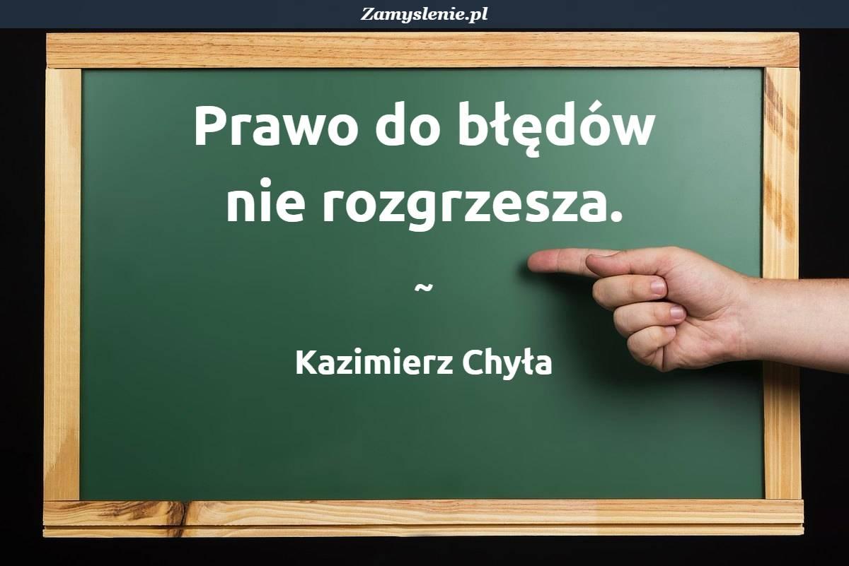 Obraz / mem do cytatu: Prawo do błędów nie rozgrzesza.