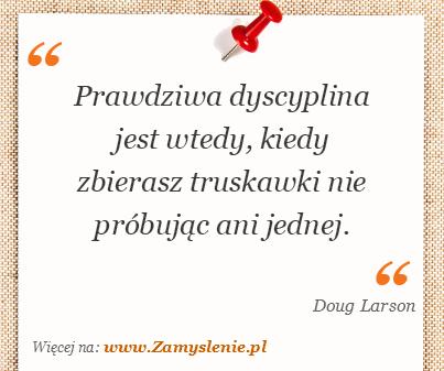 Obraz / mem do cytatu: Prawdziwa dyscyplina jest wtedy, kiedy zbierasz truskawki nie próbując ani jednej.