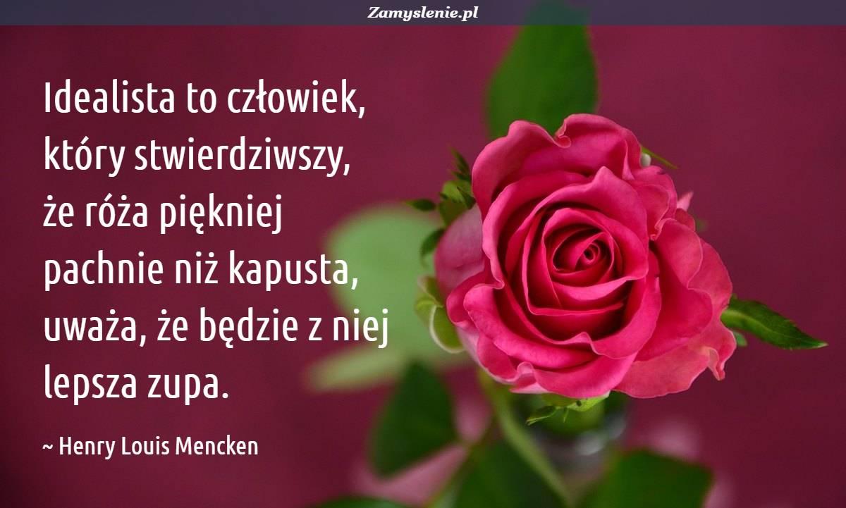 Obraz / mem do cytatu: Idealista to człowiek, który stwierdziwszy, że róża piękniej pachnie niż kapusta, uważa, że będzie z niej lepsza zupa.