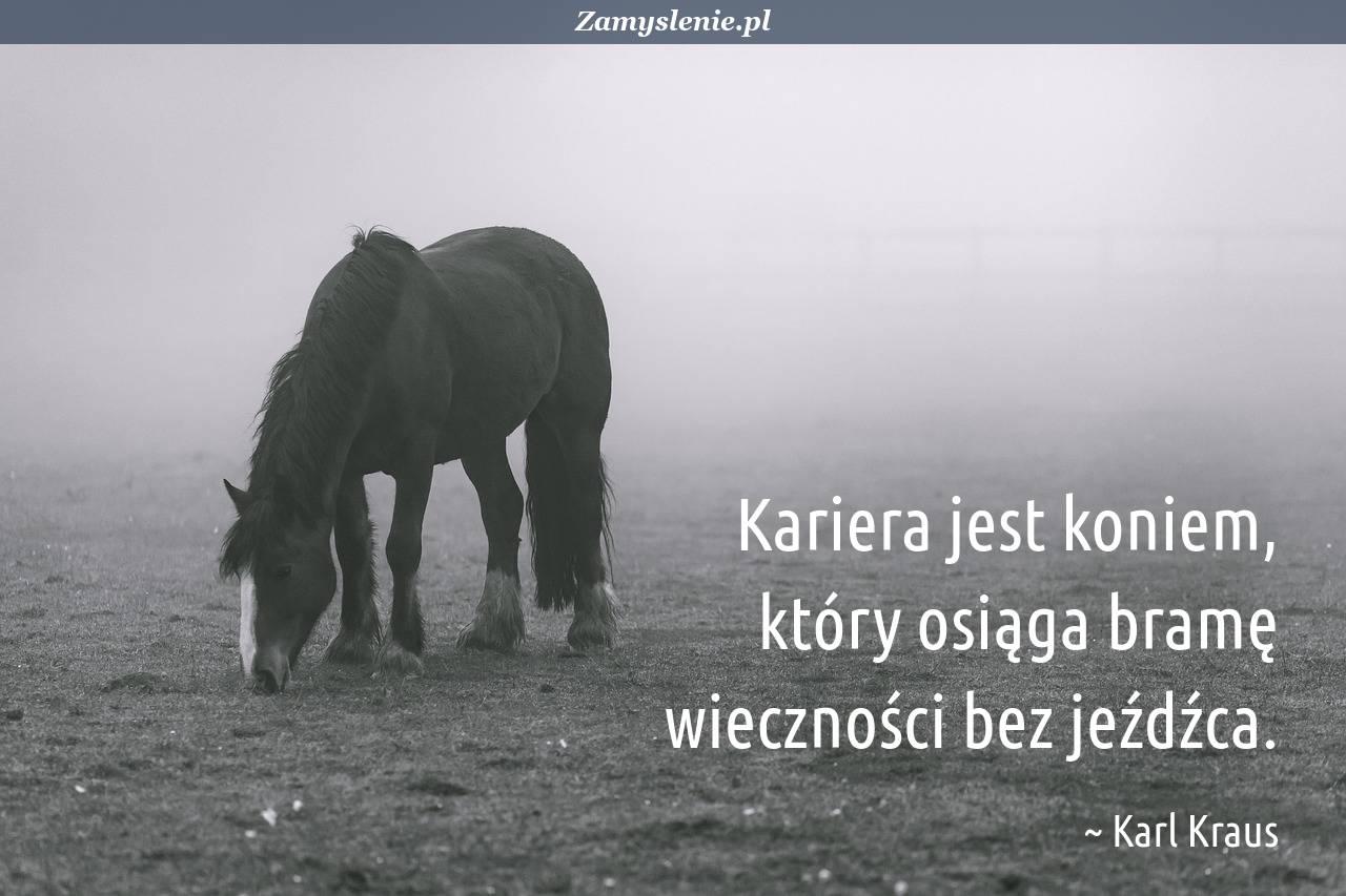 Obraz / mem do cytatu: Kariera jest koniem, który osiąga bramę wieczności bez jeźdźca.