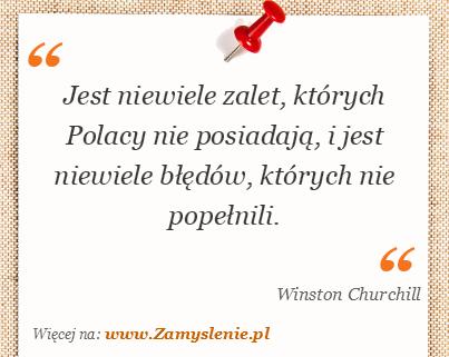 Obraz / mem do cytatu: Jest niewiele zalet, których Polacy nie posiadają, i jest niewiele błędów, których nie popełnili.