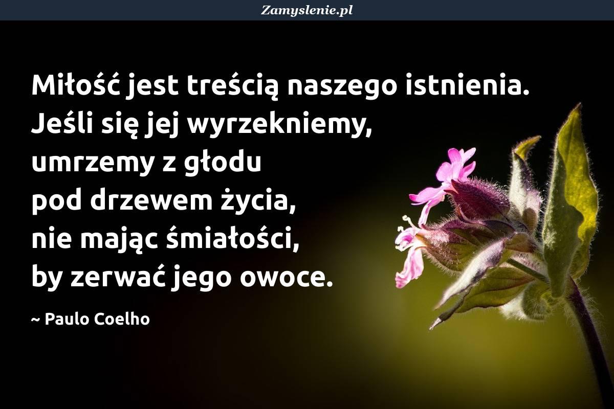 Obraz / mem do cytatu: Miłość jest treścią naszego istnienia. Jeśli się jej wyrzekniemy, umrzemy z głodu pod drzewem życia, nie mając śmiałości, by zerwać jego owoce.