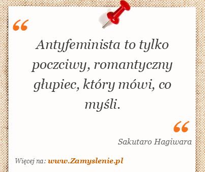 Obraz / mem do cytatu: Antyfeminista to tylko poczciwy, romantyczny głupiec, który mówi, co myśli.
