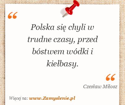 Obraz / mem do cytatu: Polska się chyli w trudne czasy, przed bóstwem wódki i kiełbasy.