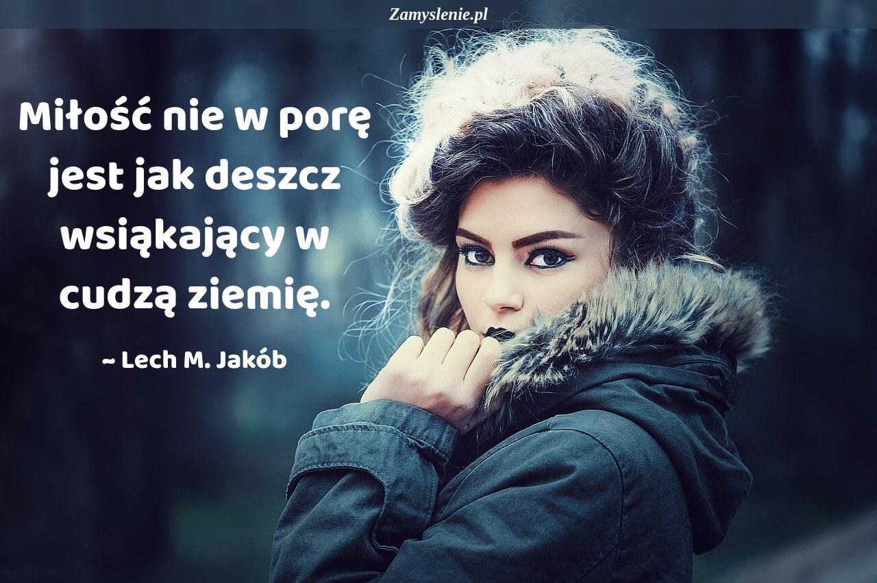 Obraz / mem do cytatu: Miłość nie w porę jest jak deszcz wsiąkający w cudzą ziemię.