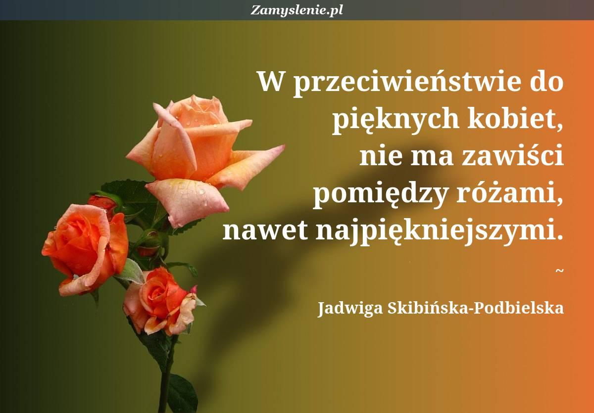 Obraz / mem do cytatu: W przeciwieństwie do pięknych kobiet, nie ma zawiści pomiędzy różami, nawet najpiękniejszymi.