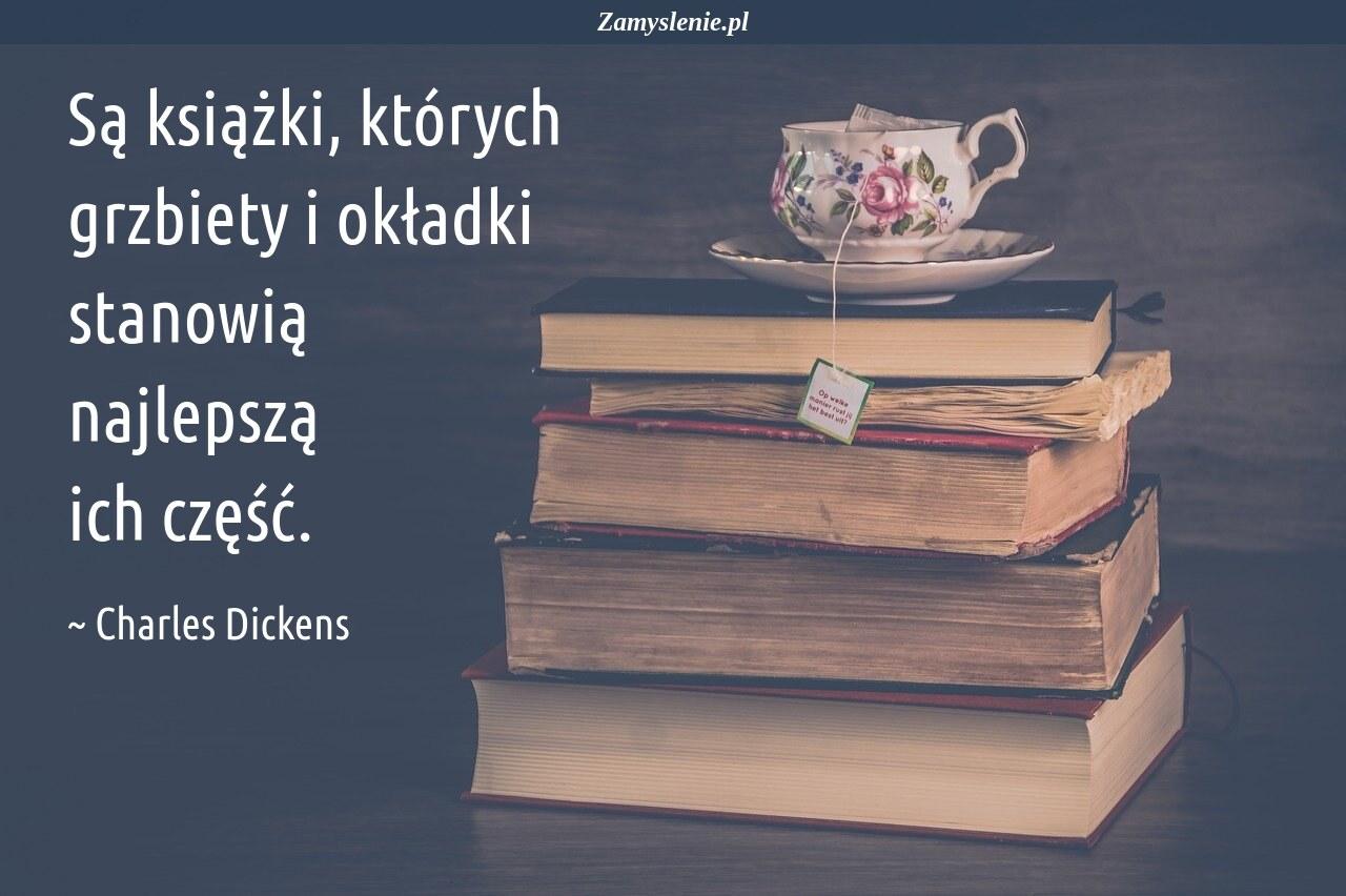Obraz / mem do cytatu: Są książki, których grzbiety i okładki stanowią najlepszą ich część.