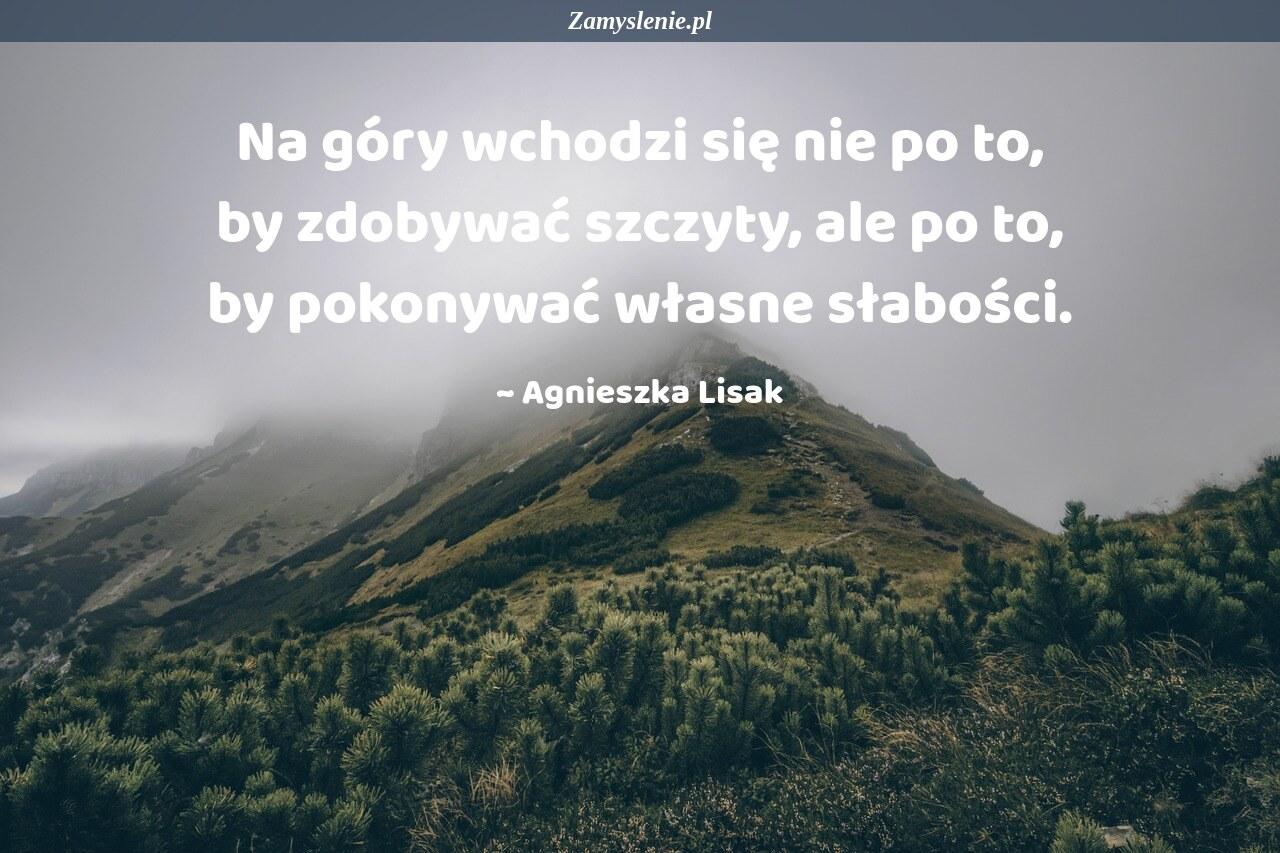 Obraz / mem do cytatu: Na góry wchodzi się nie po to, by zdobywać szczyty, ale po to by pokonywać własne słabości.