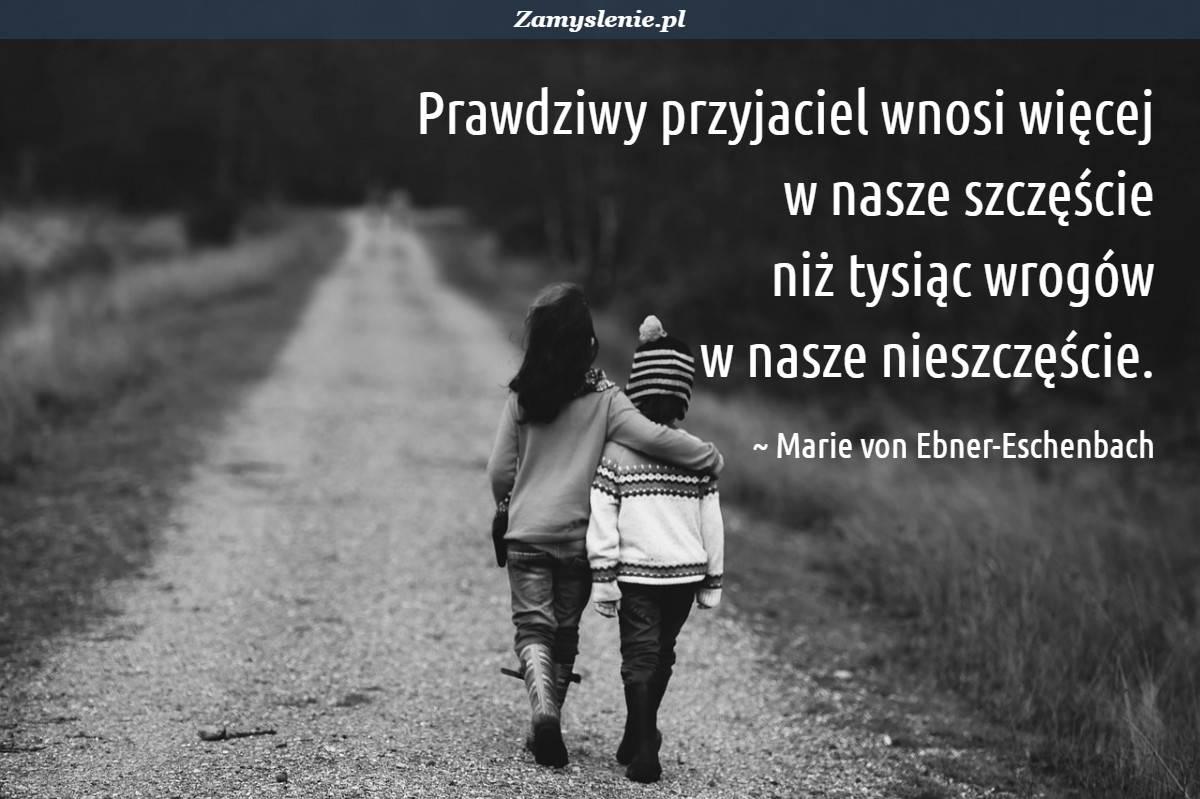Obraz / mem do cytatu: Prawdziwy przyjaciel wnosi więcej w nasze szczęście niż tysiąc wrogów w nasze nieszczęście.