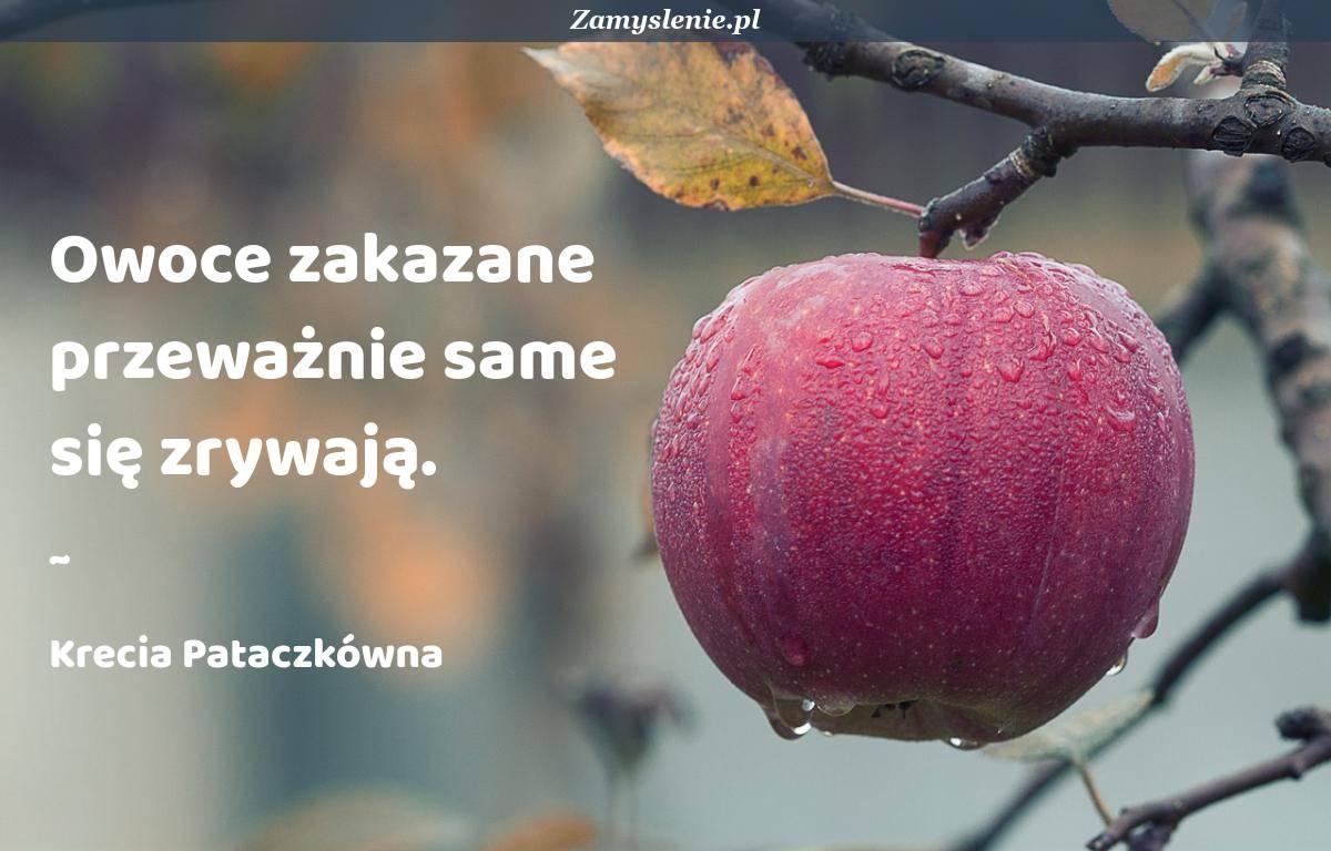 Obraz / mem do cytatu: Owoce zakazane przeważnie same się zrywają.