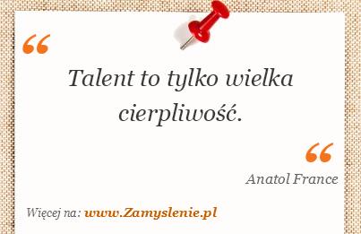 Obraz / mem do cytatu: Talent to tylko wielka cierpliwość.