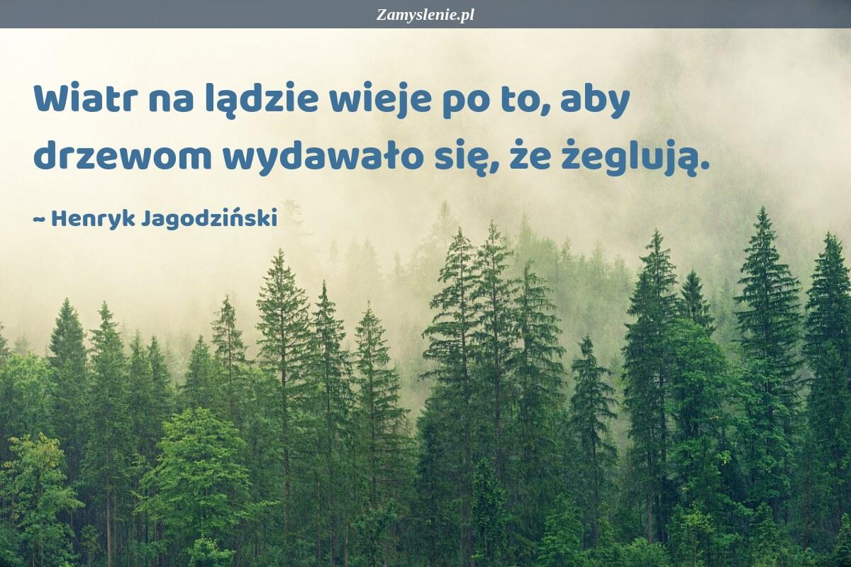 Obraz / mem do cytatu: Wiatr na lądzie wieje po to, aby drzewom wydawało się, że żeglują.