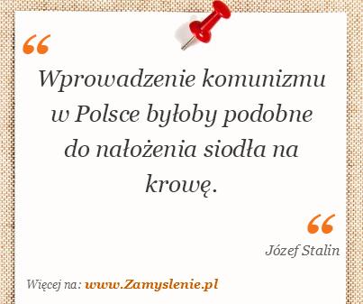 Obraz / mem do cytatu: Wprowadzenie komunizmu w Polsce byłoby podobne do nałożenia siodła na krowę.