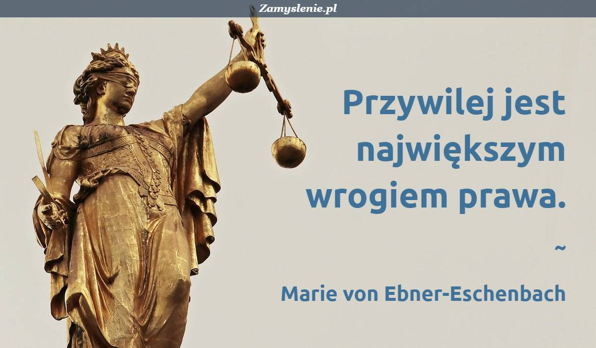 Obraz / mem do cytatu: Przywilej jest największym wrogiem prawa.