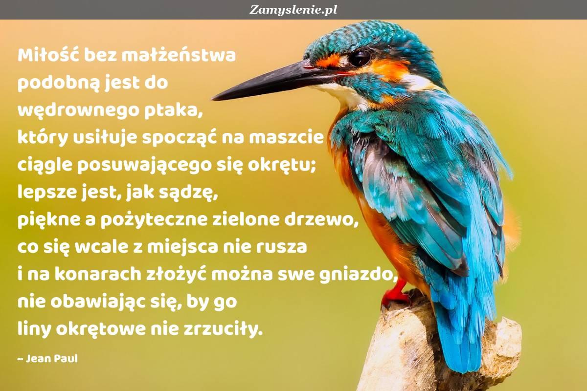 Obraz / mem do cytatu: Miłość bez małżeństwa podobną jest do wędrownego ptaka, który usiłuje spocząć na maszcie ciągle posuwającego się okrętu; lepsze jest, jak sądzę, piękne a pożyteczne zielone drzewo, co się wcale z miejsca nie rusza i na konarach złożyć można swe gniazdo, nie obawiając się, by go liny okrętowe nie zrzuciły.