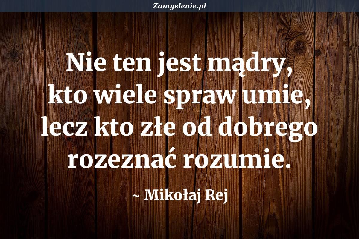 Obraz / mem do cytatu: Nie ten jest mądry, kto wiele spraw umie, lecz kto złe od dobrego rozeznać rozumie.