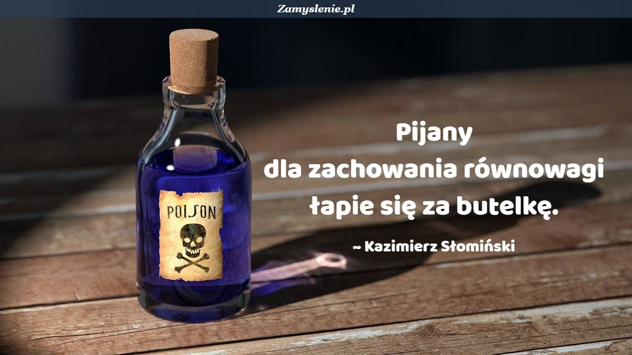Obraz / mem do cytatu: Pijany dla zachowania równowagi łapie się za butelkę.