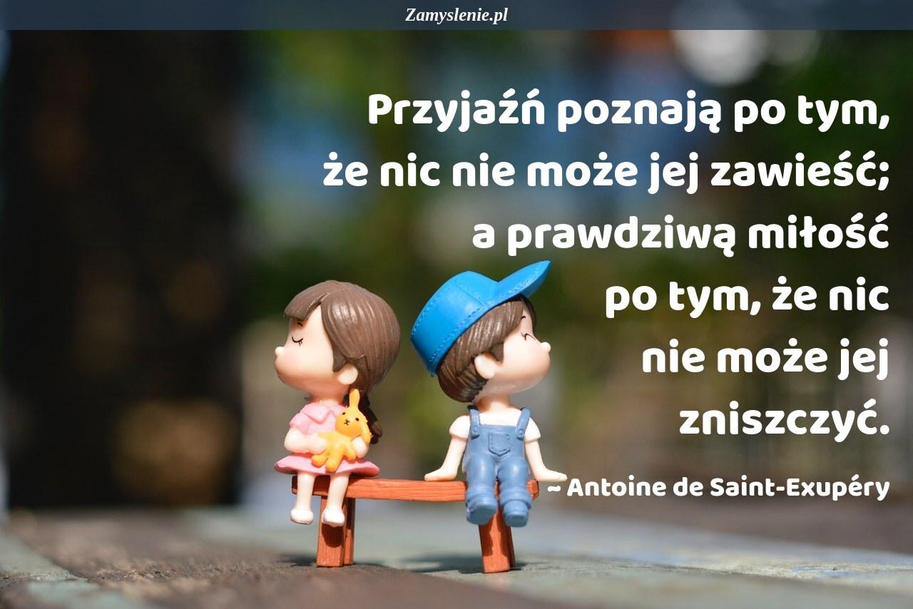 Obraz / mem do cytatu: Przyjaźń poznają po tym, że nic nie może jej zawieść; a prawdziwą miłość po tym, że nic nie może jej zniszczyć.