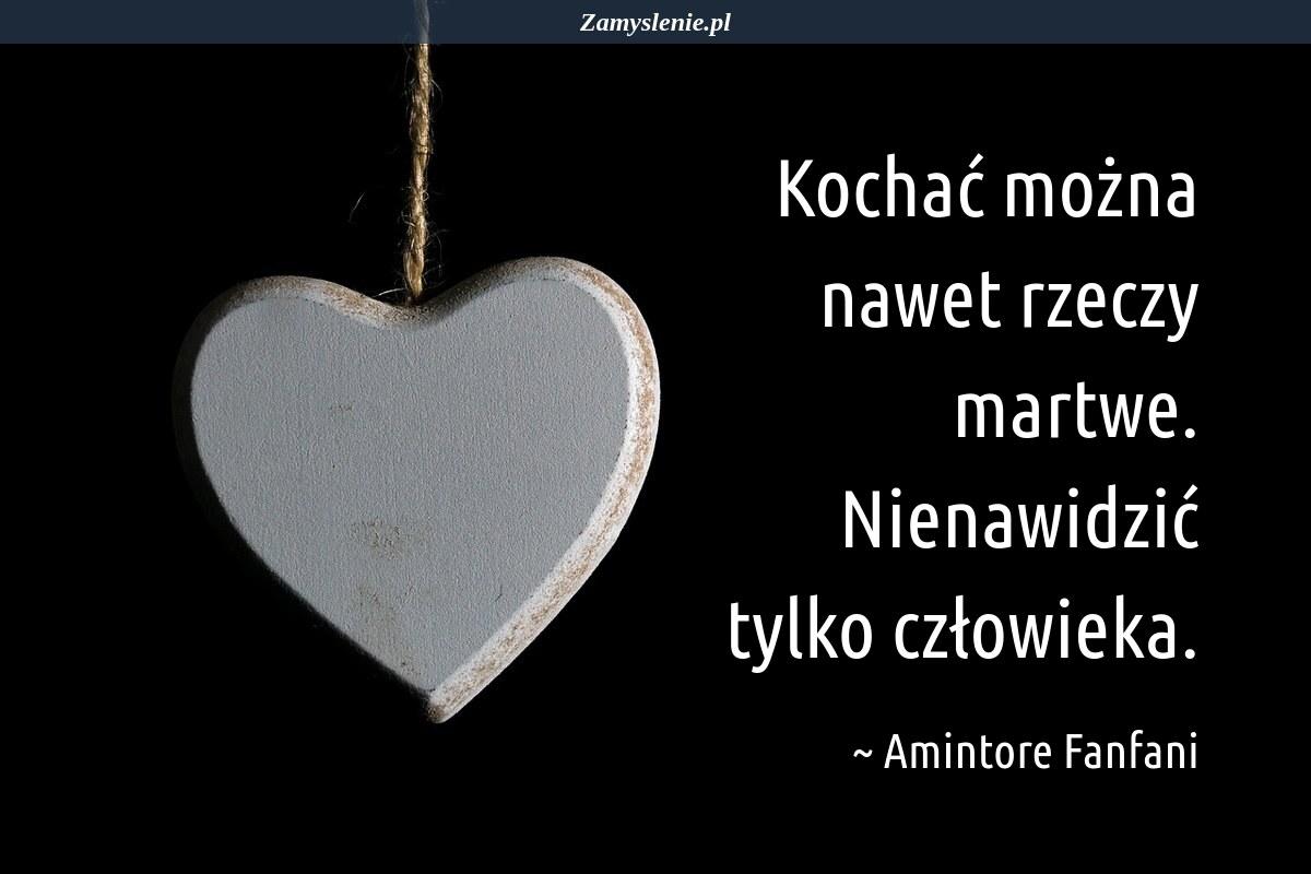 Obraz / mem do cytatu: Kochać można nawet rzeczy martwe. Nienawidzić tylko człowieka.