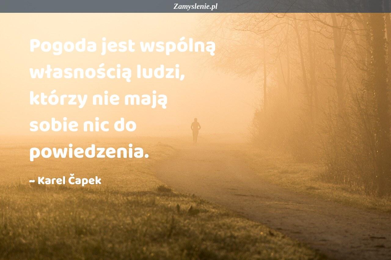 Obraz / mem do cytatu: Pogoda jest wspólną własnością ludzi, którzy nie mają sobie nic do powiedzenia.