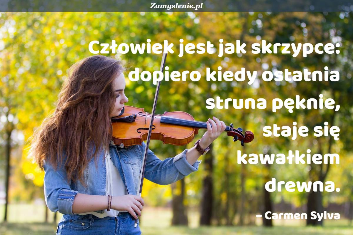 Obraz / mem do cytatu: Człowiek jest jak skrzypce: dopiero kiedy ostatnia struna pęknie, staje się kawałkiem drewna.