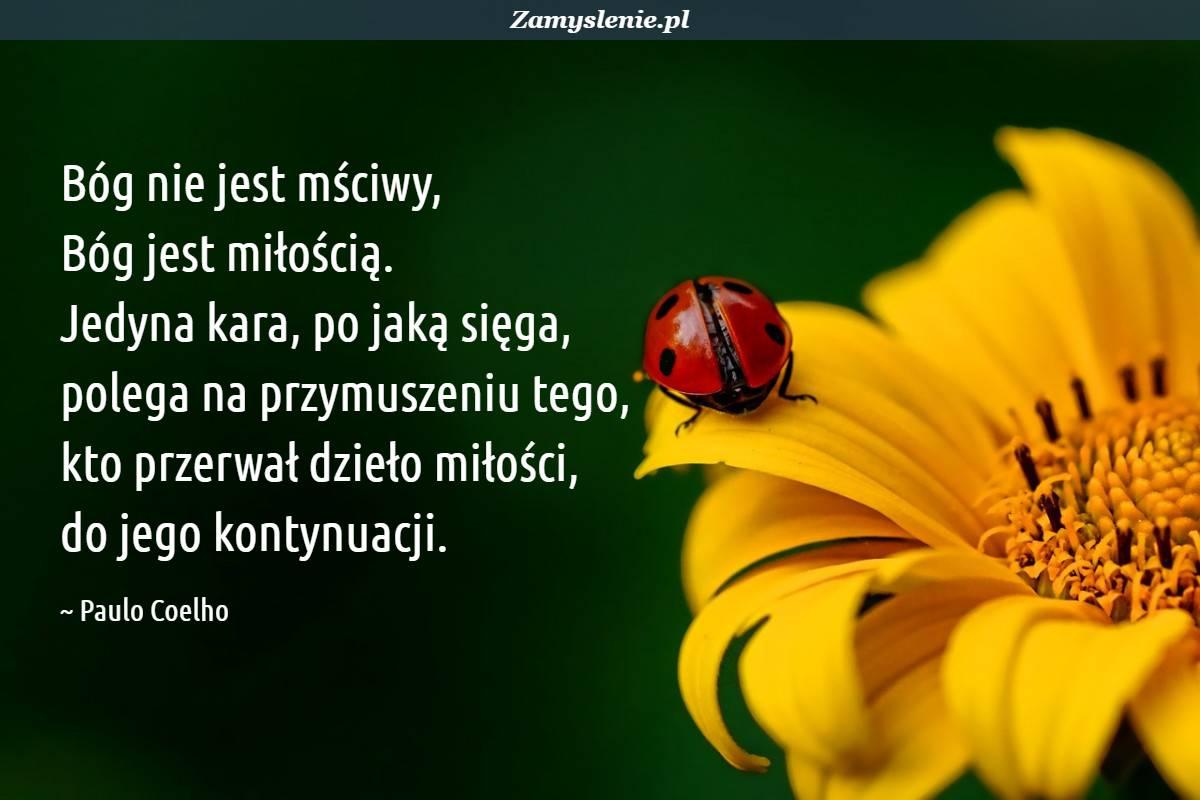 Obraz / mem do cytatu: Bóg nie jest mściwy, Bóg jest miłością. Jedyna kara, po jaką sięga, polega na przymuszeniu tego, kto przerwał dzieło miłości, do jego kontynuacji.