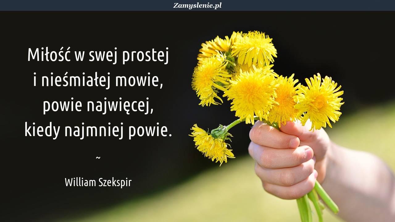 Obraz / mem do cytatu: Miłość w swej prostej <br /> i nieśmiałej mowie, <br /> powie najwięcej, <br /> kiedy najmniej powie.