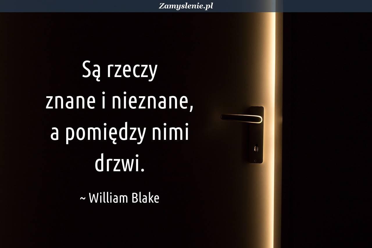 Obraz / mem do cytatu: Są rzeczy znane i nieznane, a pomiędzy nimi drzwi.