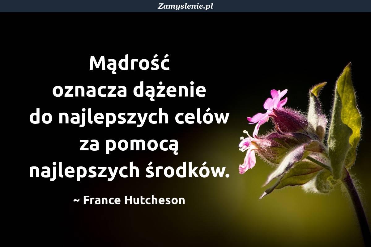 Obraz / mem do cytatu: Mądrość oznacza dążenie do najlepszych celów za pomocą najlepszych środków.