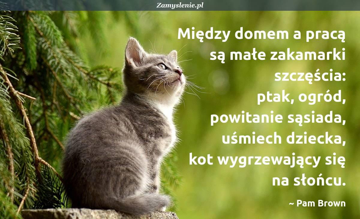 Obraz / mem do cytatu: Między domem a pracą są małe zakamarki szczęścia: ptak, ogród, powitanie sąsiada, uśmiech dziecka, kot wygrzewający się na słońcu.