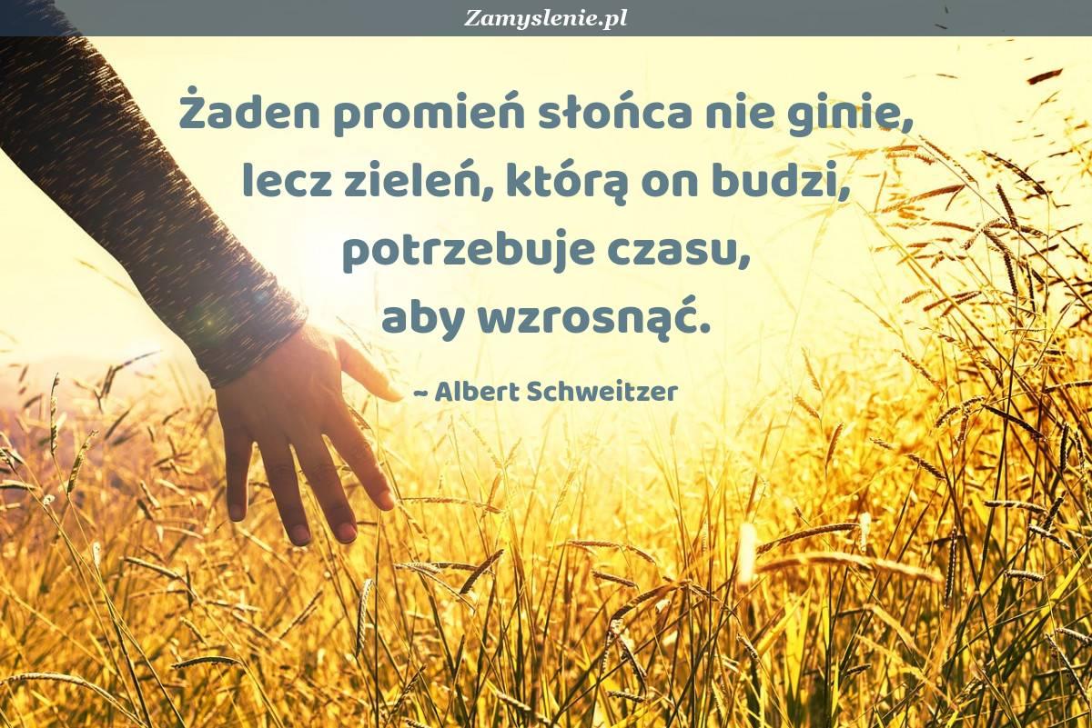 Obraz / mem do cytatu: Żaden promień słońca nie ginie, lecz zieleń, którą on budzi, potrzebuje czasu, aby wzrosnąć.