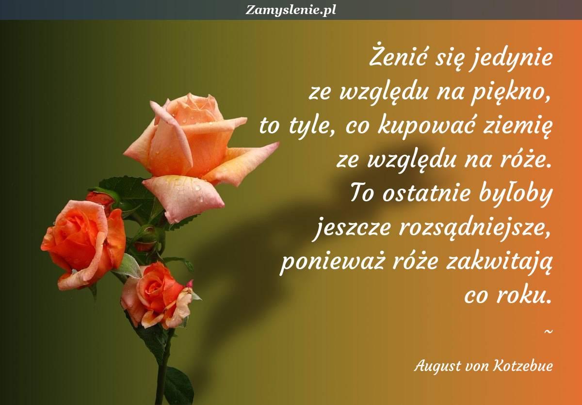 Obraz / mem do cytatu: Żenić się jedynie ze względu na piękno, to tyle, co kupować ziemię ze względu na róże. To ostatnie byłoby jeszcze rozsądniejsze, ponieważ róże zakwitają co roku.