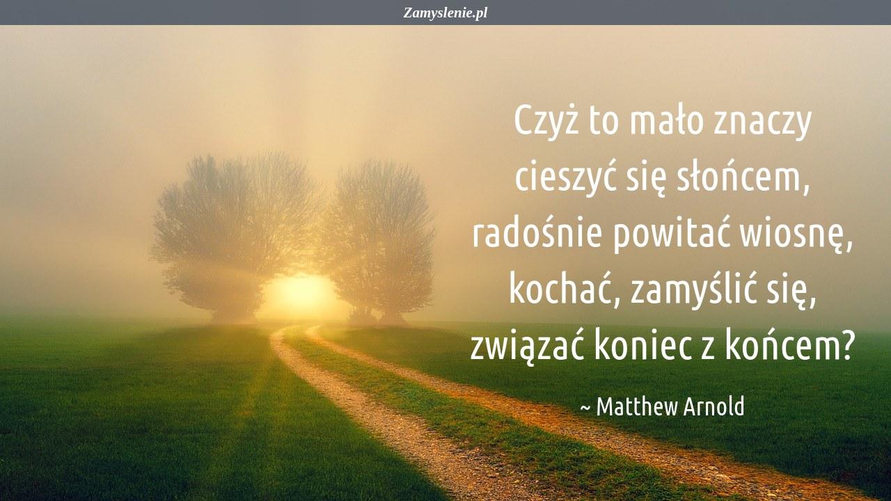 Obraz / mem do cytatu: Czyż to mało znaczy cieszyć się słońcem, radośnie powitać wiosnę, kochać, zamyślić się, związać koniec z końcem?