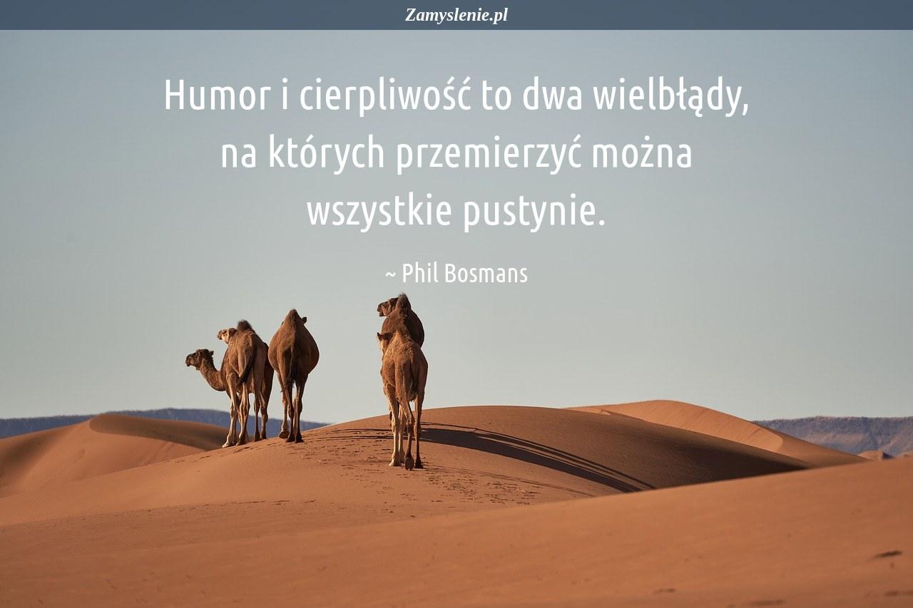 Obraz / mem do cytatu: Humor i cierpliwość to dwa wielbłądy, na których przemierzyć można wszystkie pustynie.