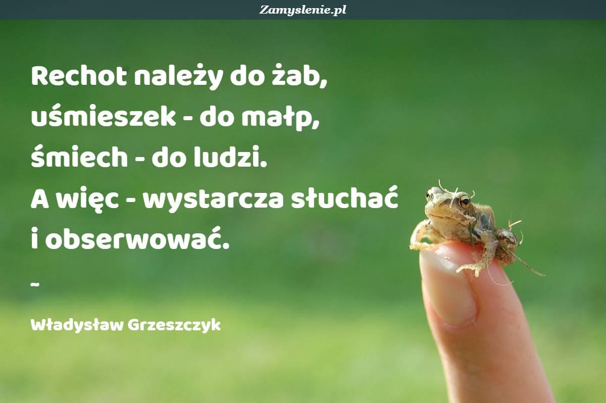 Obraz / mem do cytatu: Rechot należy do żab, uśmieszek - do małp, śmiech - do ludzi. A więc - wystarcza słuchać i obserwować.