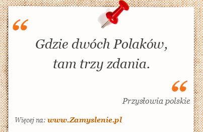 Obraz / mem do cytatu: Gdzie dwóch Polaków, tam trzy zdania.
