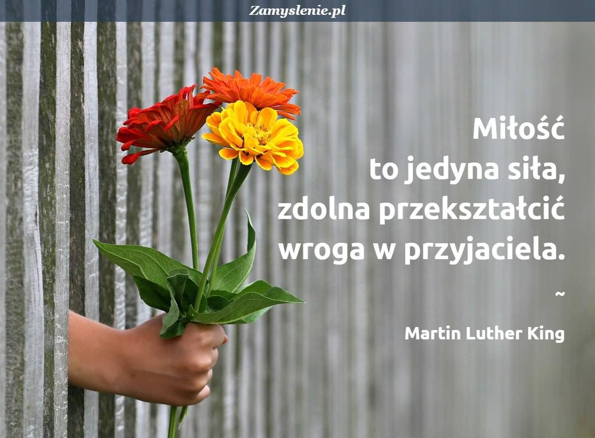 Obraz / mem do cytatu: Miłość to jedyna siła, zdolna przekształcić wroga w przyjaciela.