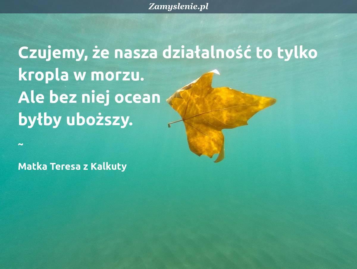 Obraz / mem do cytatu: Czujemy, że nasza działalność to tylko kropla w morzu. Ale bez niej ocean byłby uboższy.