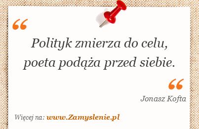 Obraz / mem do cytatu: Polityk zmierza do celu, poeta podąża przed siebie.