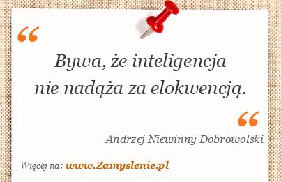 Obraz / mem do cytatu: Bywa, że inteligencja nie nadąża za elokwencją.